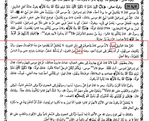 Study Quran P2 2